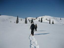 Caribou Lodge Alaska, Alaska Wilderness Lodge, Alaska Lodge, Wilderness Lodge, Hike, Hiking, Camp, Camping