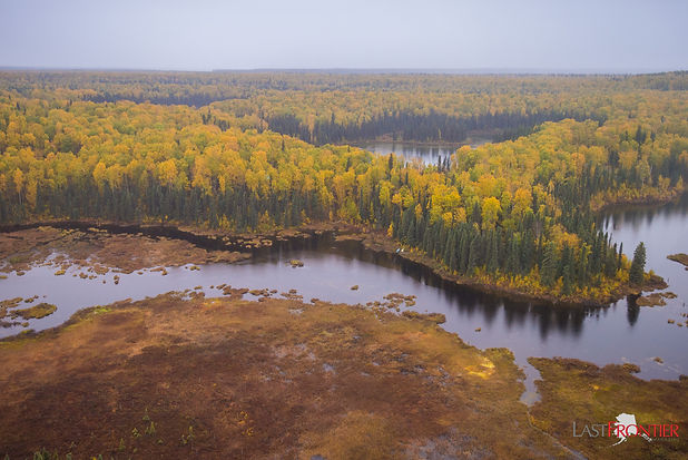 Alaska fall colors seen from a float-plane as it leaves Talkeetna bound for Caribou Lodge