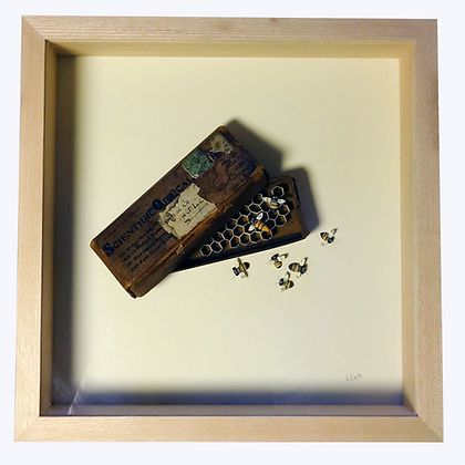 'Bees and Glasses Case' by Kate Kato