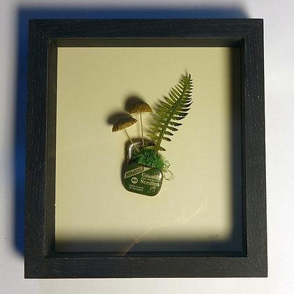 'Fungi and Tin' by Kate Kato