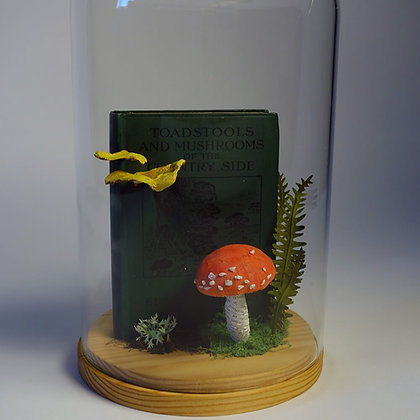 'Fungi and Book' by Kate Kato