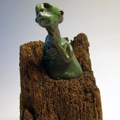 'Newts' by Dik Downey