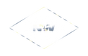NW LOGO SILVER.png