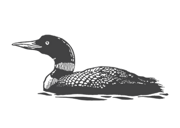 Loon_edited.png