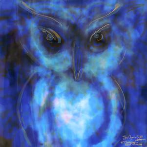 Blue Oracle.jpg