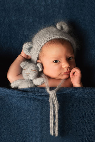 Teddy Bear Wide Awake Pose