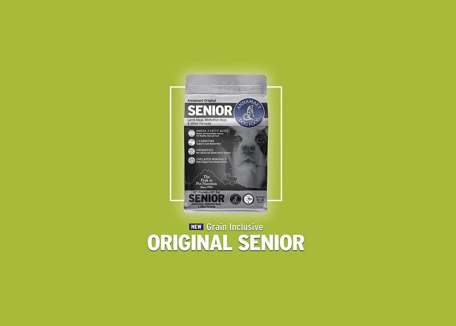 Annamaet Original Senior Ad.jpg