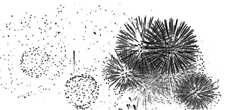 fireworks2020_1.jpg