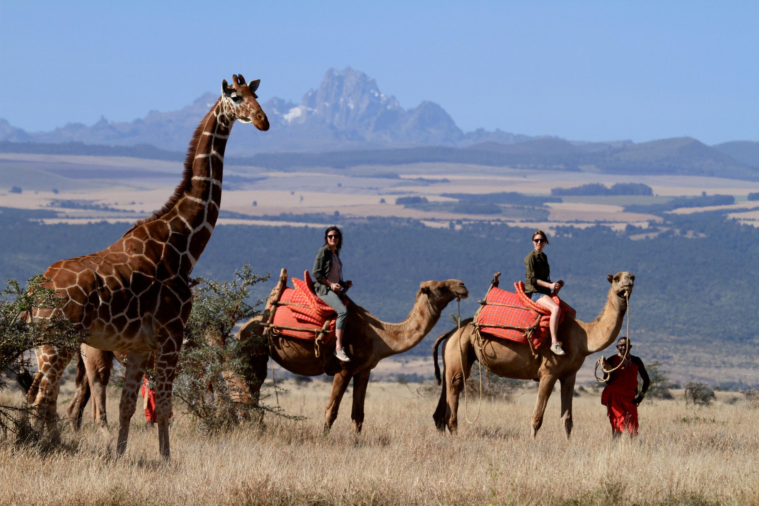 Camel Safari, Kenya