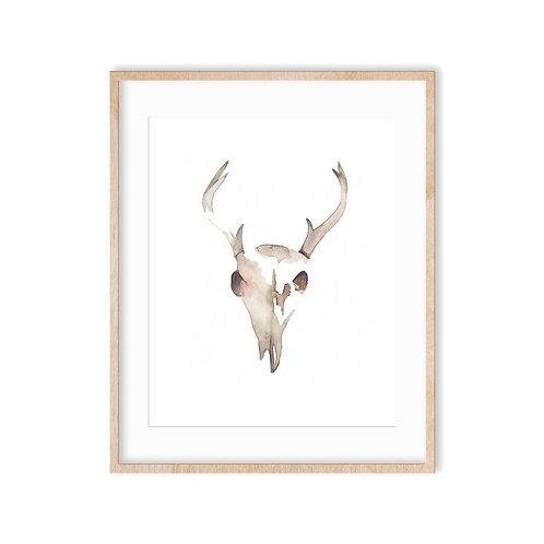 Deer Skull Art Print 8x10