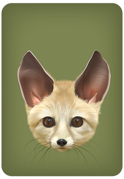 Fennec-offspring-bat_edited_edited.png