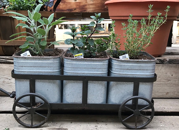 Herb Planter PL0094