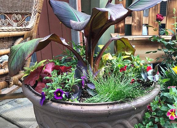 Banana Plant Pot PL0151