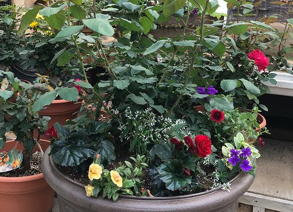Rose Planter PL0152