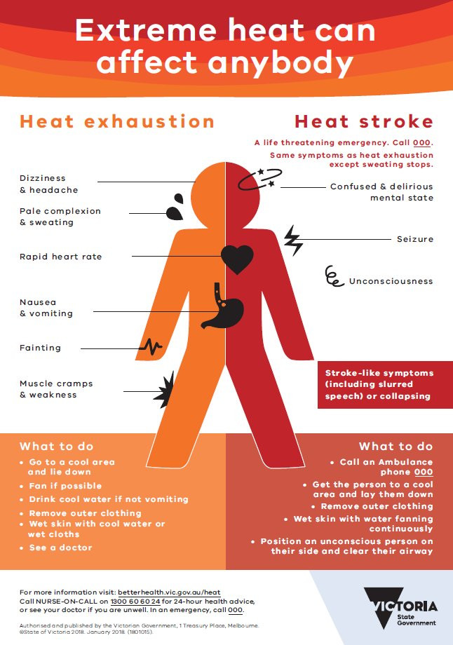 An infographic from the Victoria government, explaining the difference between heat stroke and heat exhaustion, and what to do in each case. Click here for more information