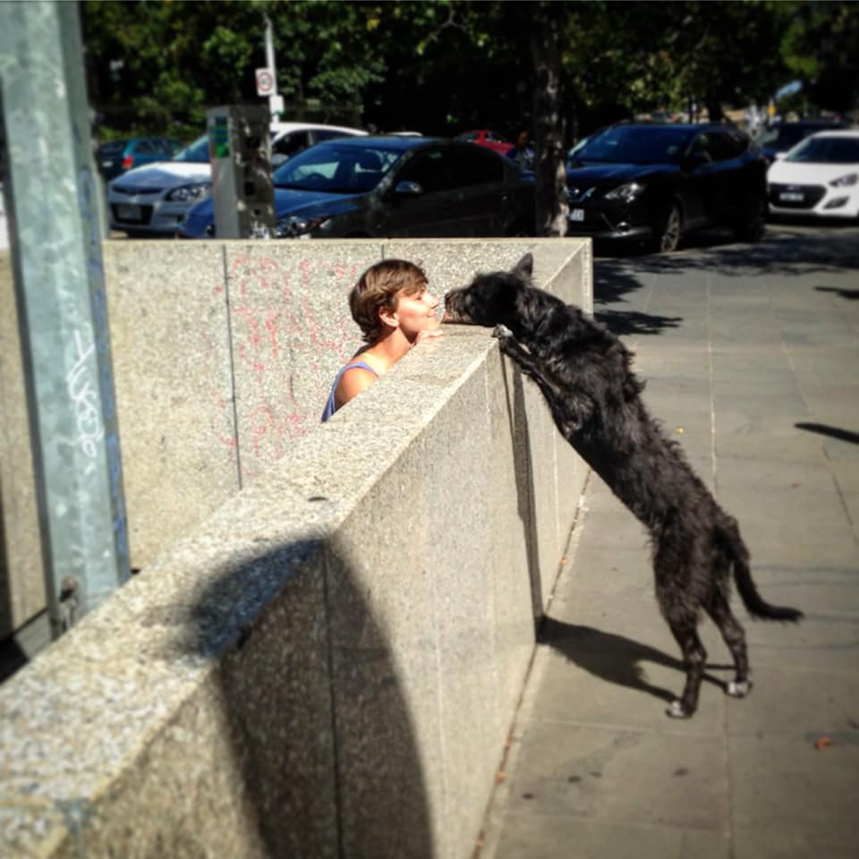 A black dog stretched out to place their paws on top of a short wall. There is a person on the other side of the wall, looking at the dog.