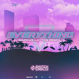 cover switch disco.jpg