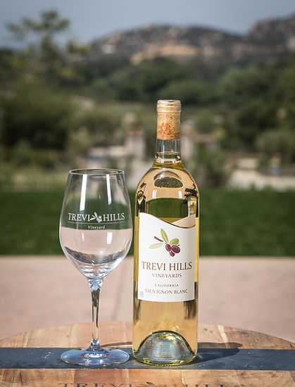 Bottle of Trevi Hills Sauvignon Blanc