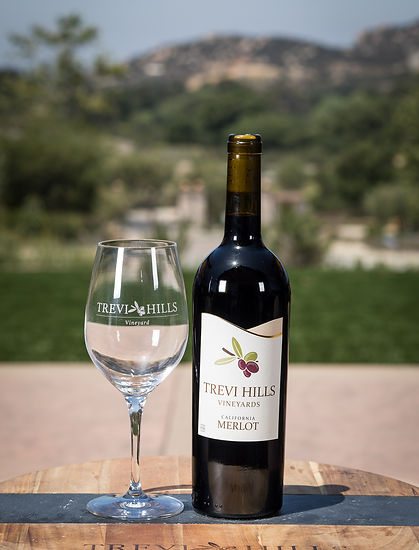 Bottle of THV 2015 Merlot
