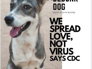 SPREAD LOVE, NOT VIRUS.