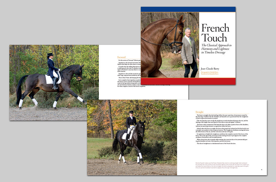 French Touch book