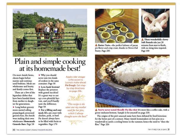The Amish Cook's Family Favorite Recipes direct mail