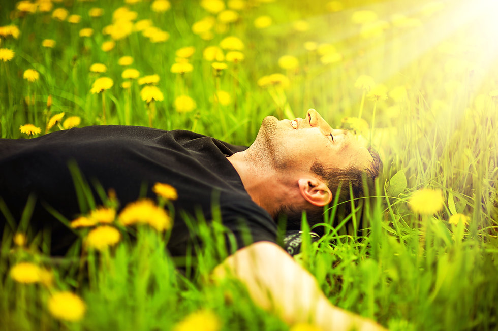 Happy smiling man lying on grass with ye
