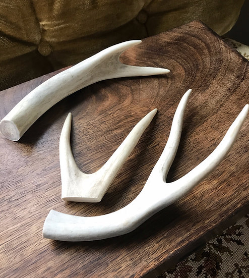 Antler for Ritual & Altar~ Naturally Shed