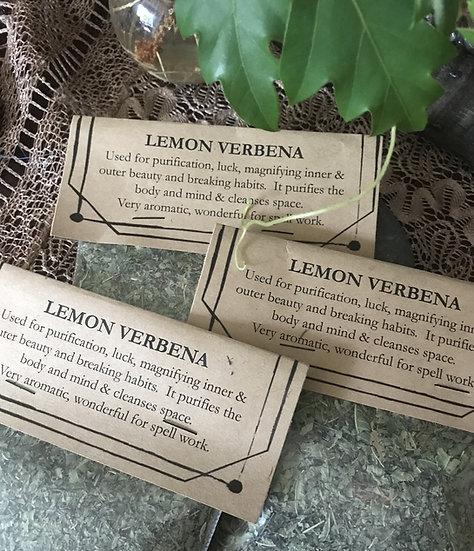 Lemon Verbena (Aloysia Triphylla)