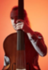 Harry Buckoke - Viola d Gamba