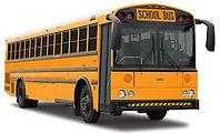 bus_lg_school_stl_hdx_v03.jpg