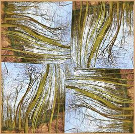 bandana 55-bomen2k-cl.jpg