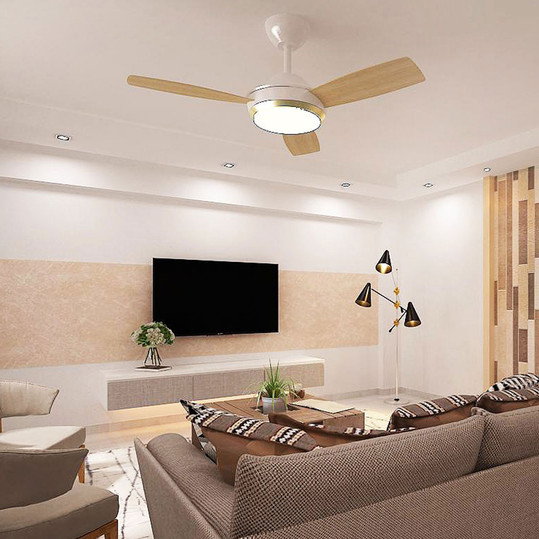 Residential: 259C Compassvale