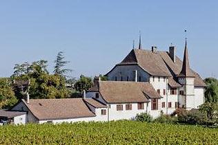 Auvernier Castle.jpg