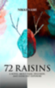 72 Raisins fiction book on Amazon
