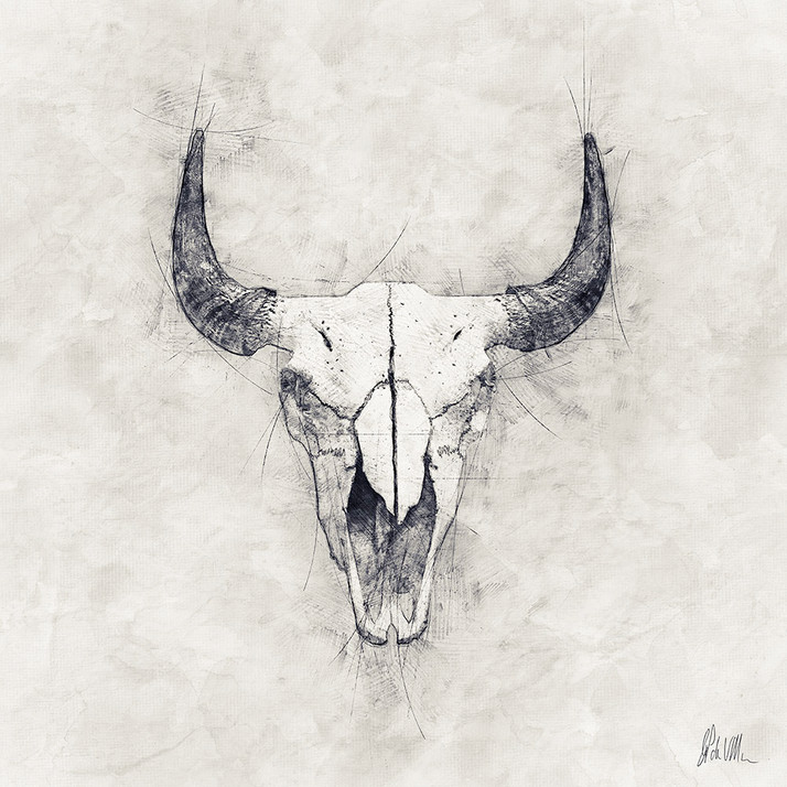 Skull & Horns 1