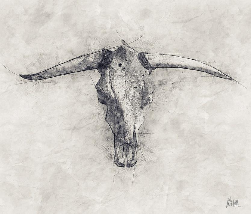 Skull & Horns 3