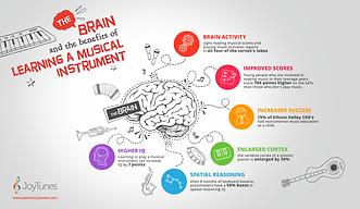Brain-Info-V04-1024x594.png