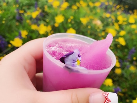Our Favorite Disney Treats of 2019, and Some of Our Least Favorite...