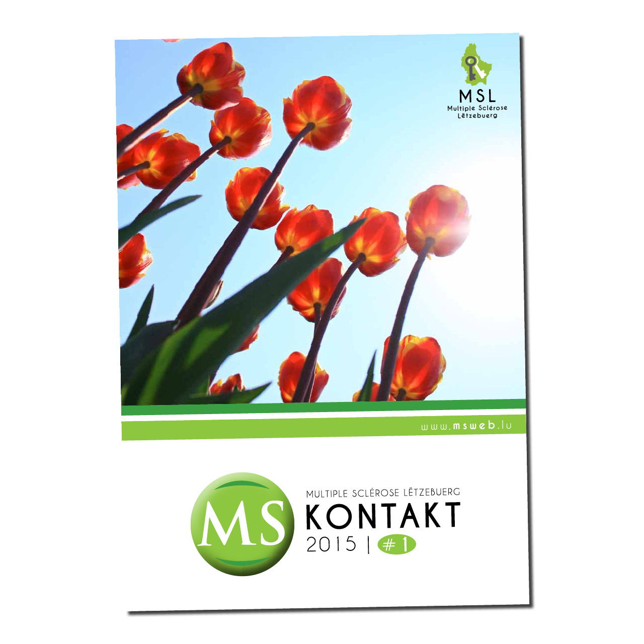 MS Kontakt
