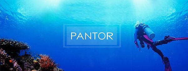 Pantor 2.jpg