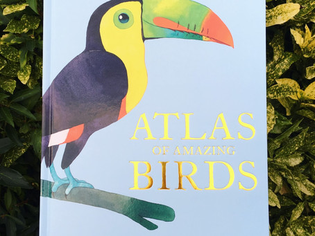 For bird lovers everywhere, this book is for you!