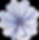 Blå Blomst Front