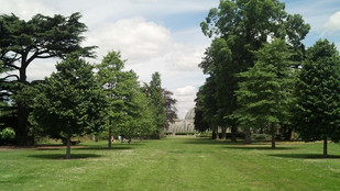 More than 700,000 trees, in 23 varieties—in London!