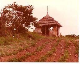 Rasta Hut, Montserrat, British West Indies