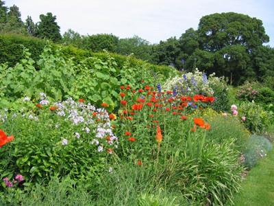 English garden in Hampshire, England