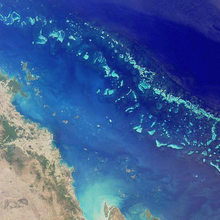 Great Barrier Reef—UNESCO study is not good news