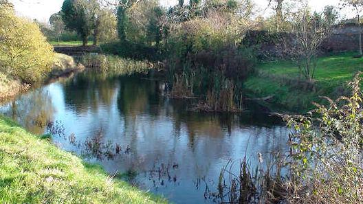 pond_full.jpg