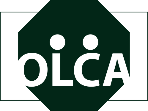 OLCA 1 corrida/1 calculation