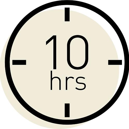 10 horas consultoría / 10 hours consulting